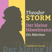 Theodor Storm: Der kleine Häwelmann