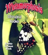 Metamorphosis: Changing Bodies
