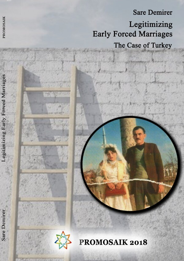 Legitimizing Early Forced Marriages: the Case of Turkey als Buch