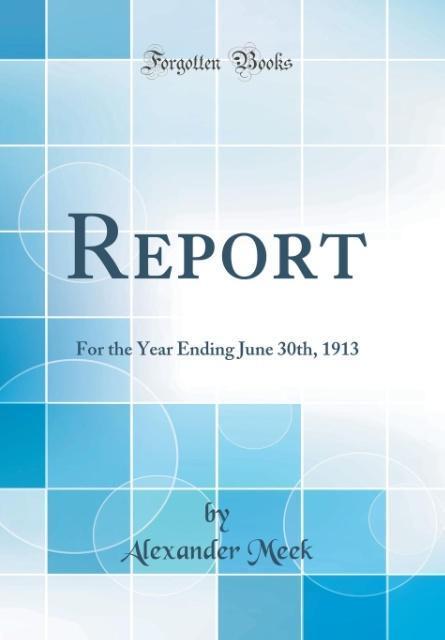 Report als Buch von Alexander Meek