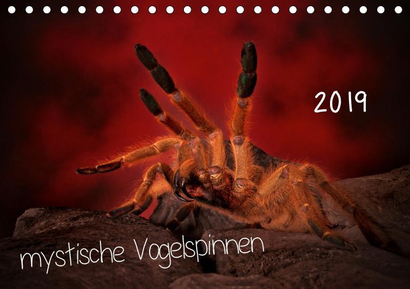 Mystische Vogelspinnen (Tischkalender 2019 DIN ...