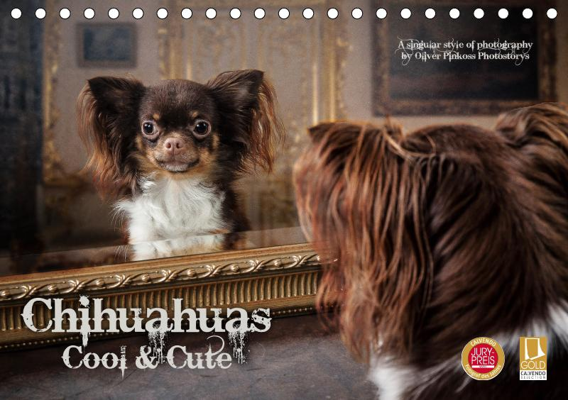 Chihuahuas - Cool and Cute (Tischkalender 2019 ...