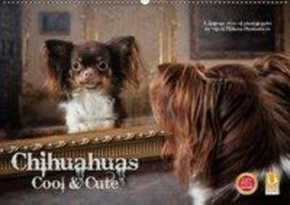 Chihuahuas - Cool and Cute (Wandkalender 2019 D...