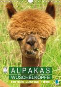 Alpakas: Wuschelk?pfe - Edition lustige Tiere (Wandkalender 2019 DIN A4 hoch)