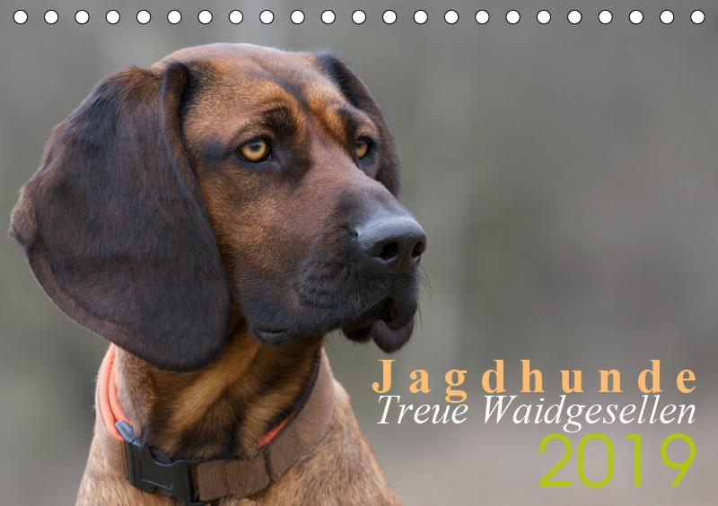 Jagdhunde - Treue Waidgesellen (Tischkalender 2...