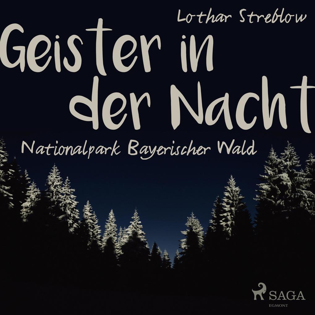 Geister in der Nacht. Nationalpark Bayerischer ...