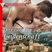 Der erotische Roman, 2: Im Feuer der Leidenschaft. Abenteuer in der Provence (Ungekürzt)