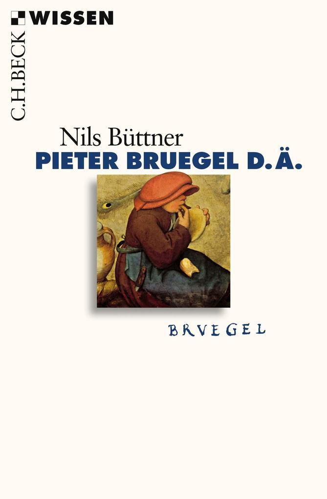 Pieter Bruegel d.Ä. als Taschenbuch