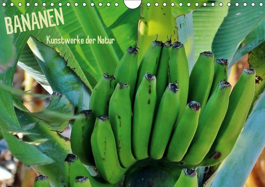 Bananen (Wandkalender 2019 DIN A4 quer)