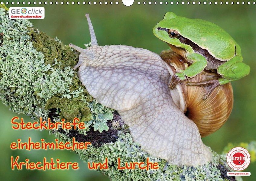 GEOclick Lernkalender: Steckbriefe einheimische...