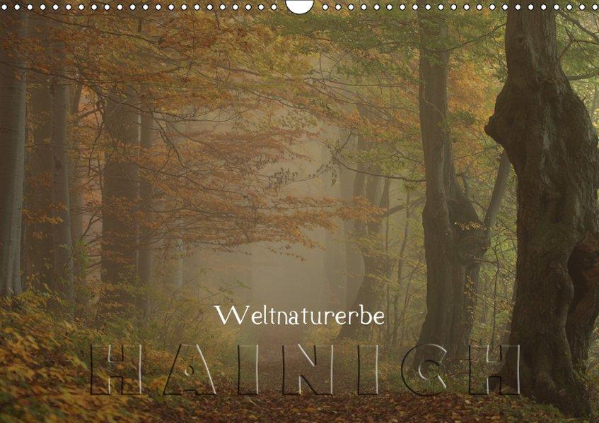 Weltnaturerbe Hainich (Wandkalender 2019 DIN A3...