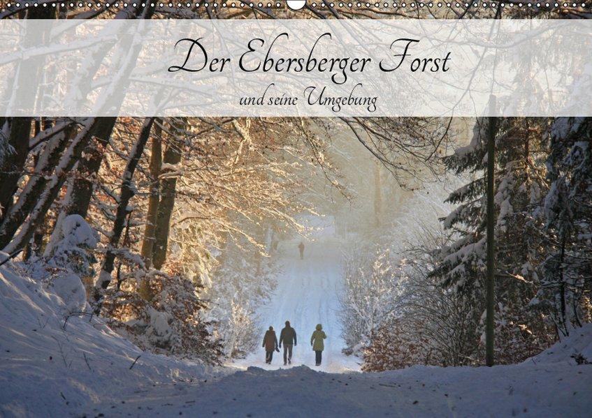 Der Ebersberger Forst und seine Umgebung (Wandk...