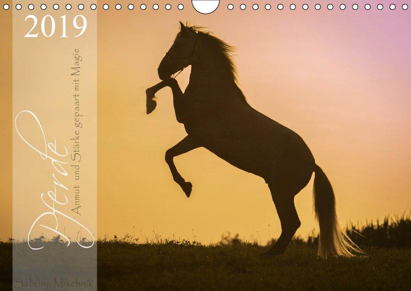Pferde - Anmut und Stärke gepaart mit Magie (Wa...