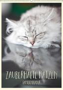 Zauberhafte Katzen - Familienplaner (Wandkalender 2019 DIN A2 hoch)