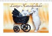 Lustiger Katzenkalender (Wandkalender 2019 DIN A4 quer)