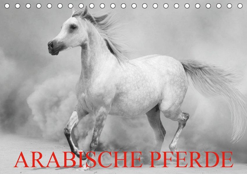 Arabische Pferde (Tischkalender 2019 DIN A5 quer)