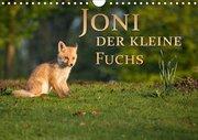 Joni, der kleine Fuchs (Wandkalender 2019 DIN A4 quer)