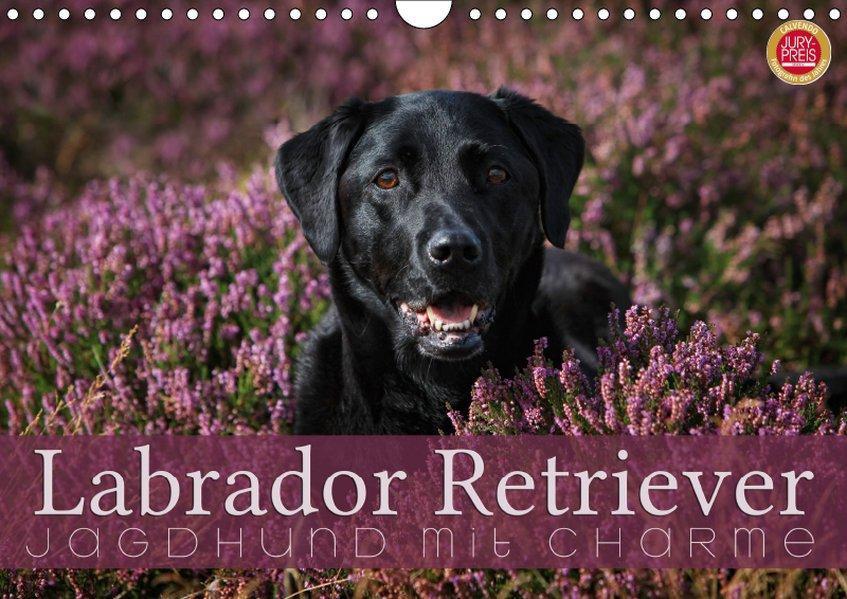 Labrador Retriever - Jagdhund mit Charme (Wandk...