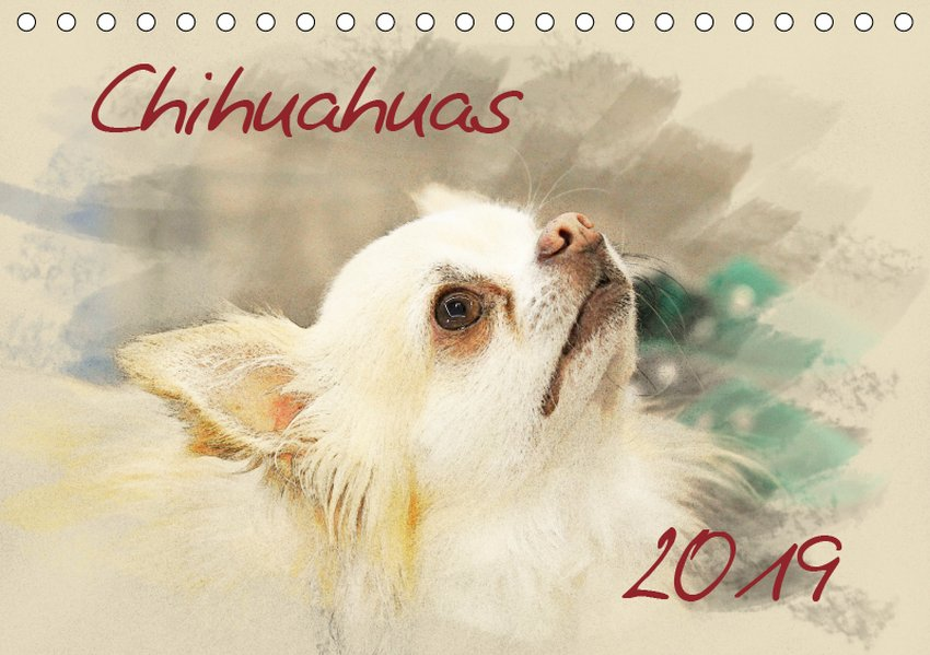 Chihuahuas 2019 (Tischkalender 2019 DIN A5 quer)