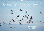 Kraniche in Vorpommern (Wandkalender 2019 DIN A4 quer)