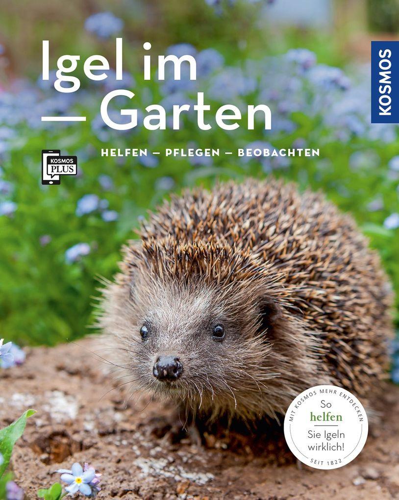 Igel im Garten (Mein Garten) als Buch von Monik...