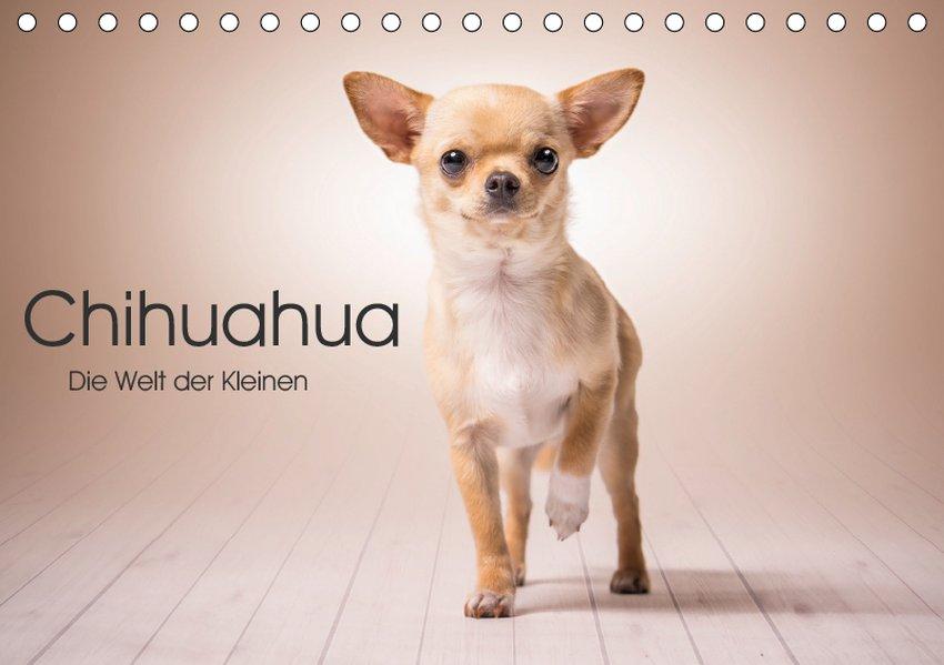 Chihuahua - Die Welt der Kleinen (Tischkalender...