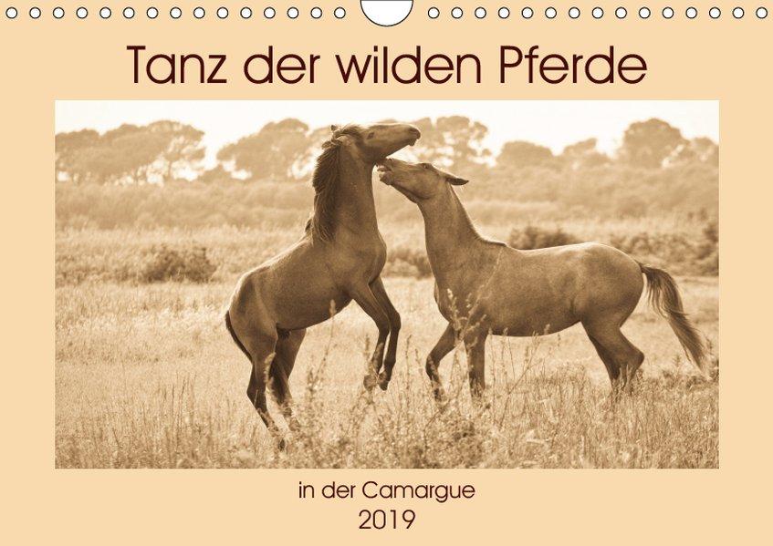 Tanz der wilden Pferde in der Camargue (Wandkal...