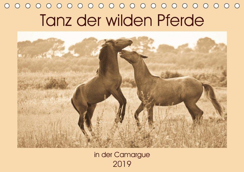 Tanz der wilden Pferde in der Camargue (Tischka...