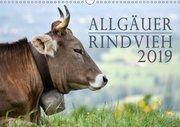 Allgäuer Rindvieh 2019 (Wandkalender 2019 DIN A3 quer)