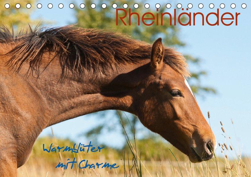 Rheinländer - Warmblüter mit Charme (Tischkalen...