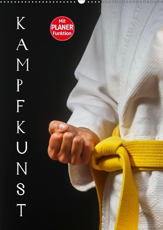 Kampfkunst (Wandkalender 2019 DIN A2 hoch)