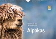 Portraits der kuscheligen Alpakas (Wandkalender 2019 DIN A4 quer)