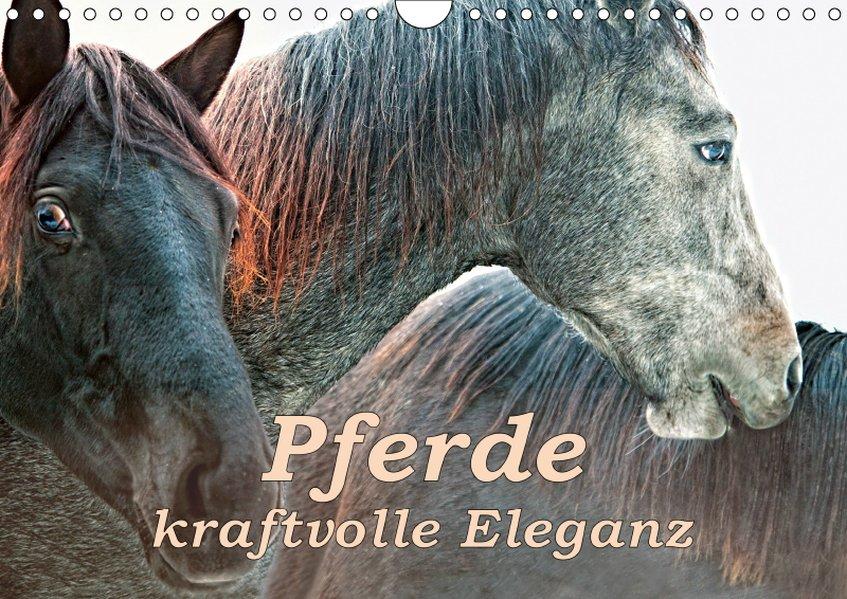 Pferde - kraftvolle Eleganz (Wandkalender 2019 ...