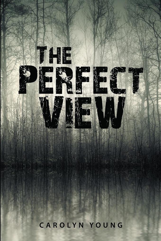 The Perfect View als Taschenbuch von Carolyn Young