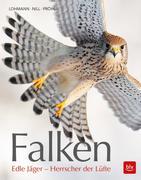 Falken