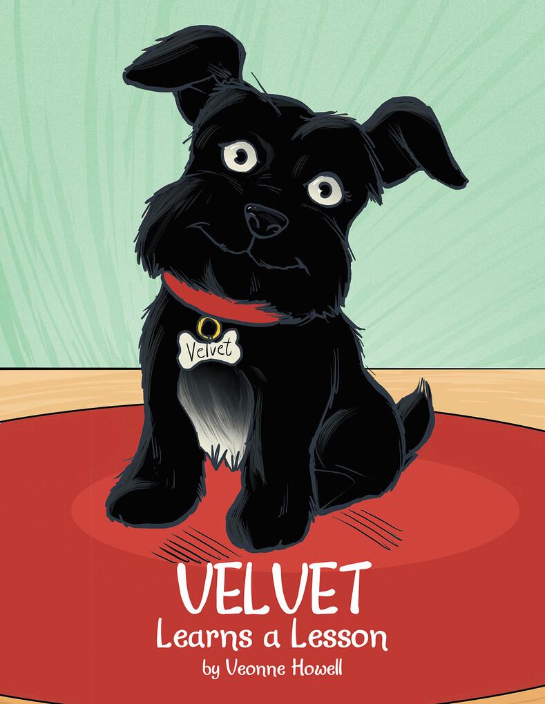 Velvet Learns a Lesson als eBook Download von V...