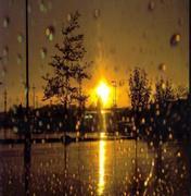 A DAY OF RAIN