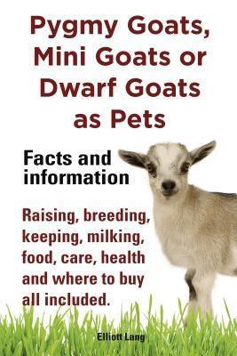 Pygmy Goats as Pets. Pygmy Goats, Mini Goats or...