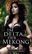 Im Delta der Mekong | Erotischer Roman