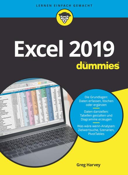 Excel 2019 für Dummies als Buch