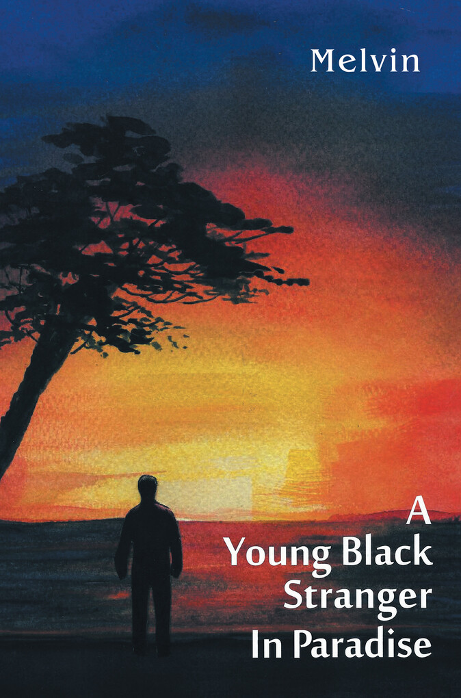 A Young Black Stranger in Paradise als eBook Do...