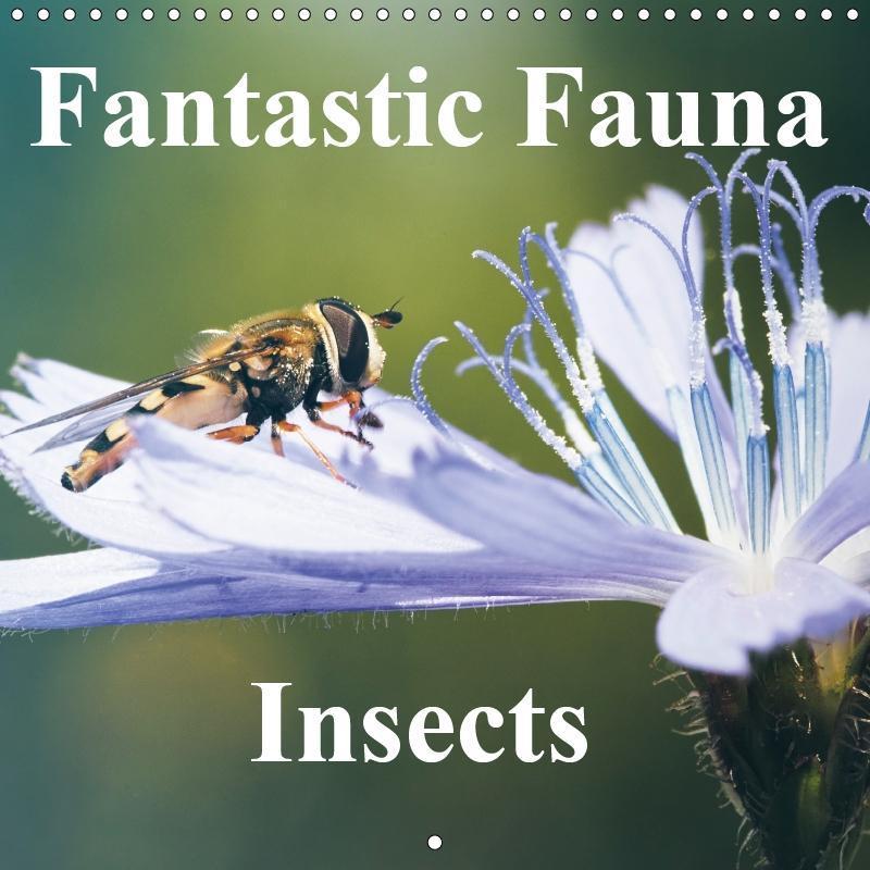 Fantastic Fauna - Insects. (Wall Calendar 2019 ...