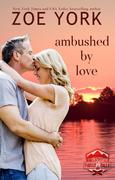 Ambushed by Love (SEALs at Camp Firefly Falls, #3)