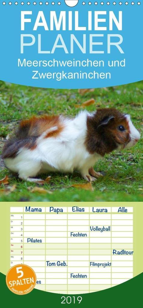Meerschweinchen und Zwergkaninchen - Familienpl...