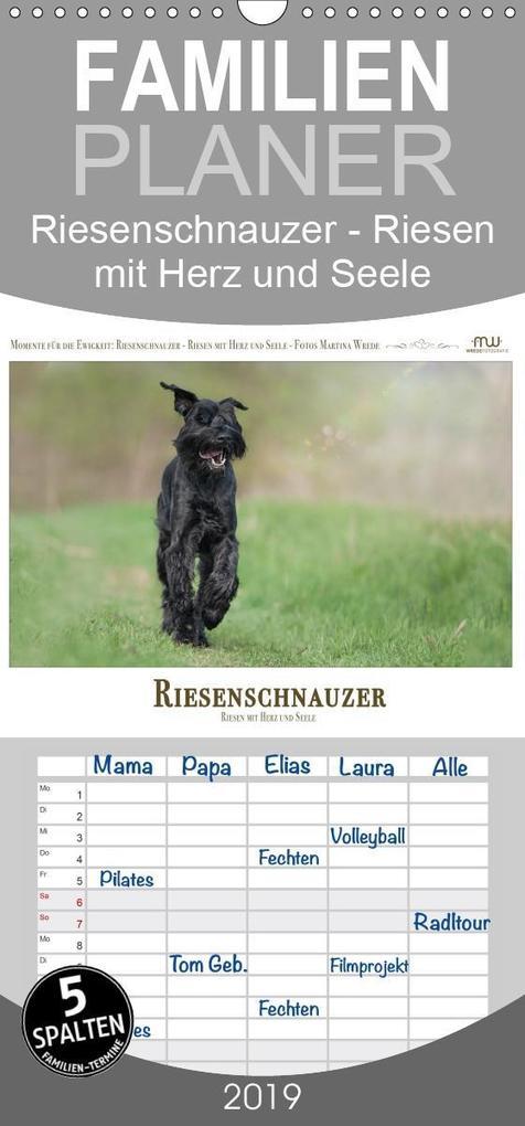 Riesenschnauzer - Riesen mit Herz und Seele - F...