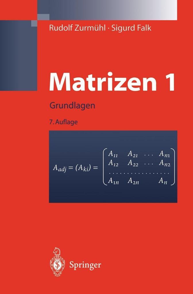 Matrizen und ihre Anwendungen 1 als eBook Downl...