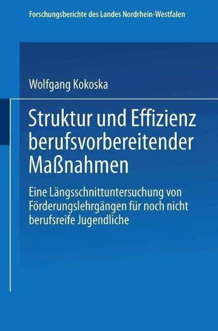 Struktur und Effizienz berufsvorbereitender Man...