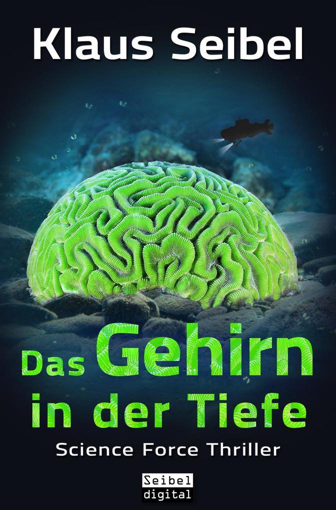 Das Gehirn in der Tiefe als eBook