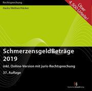 SchmerzensgeldBeträge 2019. CD-ROM