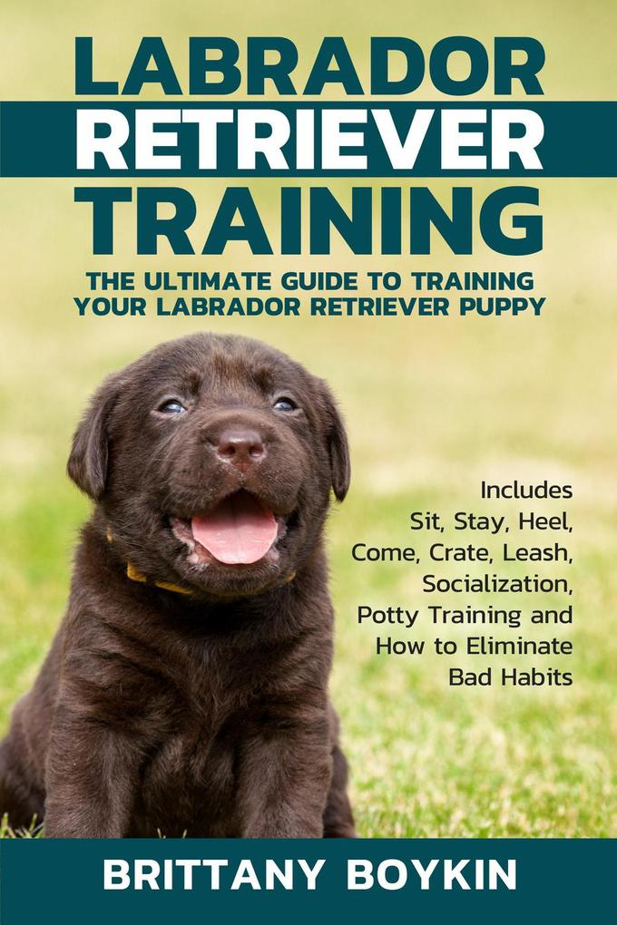 Labrador Retriever Training: The Ultimate Guide...